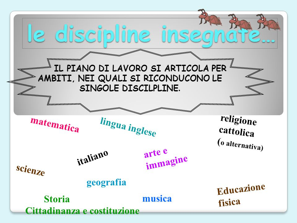 le discipline insegnate…