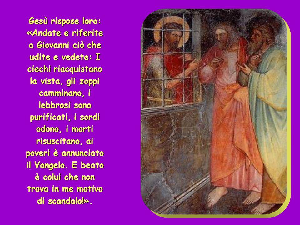 Gesù rispose loro: «Andate e riferite a Giovanni ciò che udite e vedete: I ciechi riacquistano la vista, gli zoppi camminano, i lebbrosi sono purificati, i sordi odono, i morti risuscitano, ai poveri è annunciato il Vangelo. E beato è colui che non trova in me motivo di scandalo!».