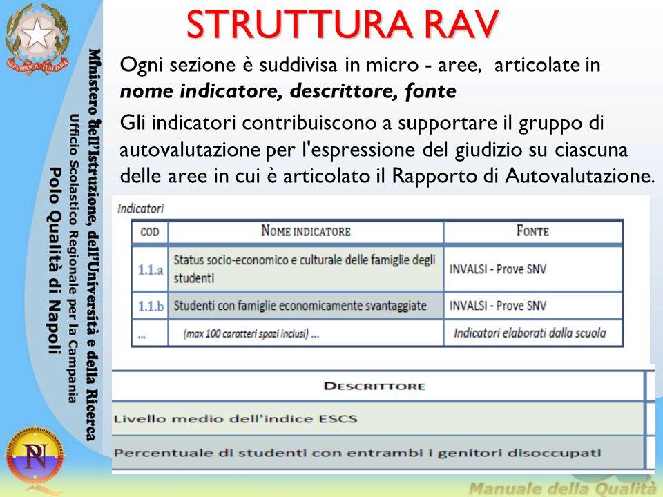 STRUTTURA RAV Ogni sezione è suddivisa in micro - aree, articolate in nome indicatore, descrittore, fonte.