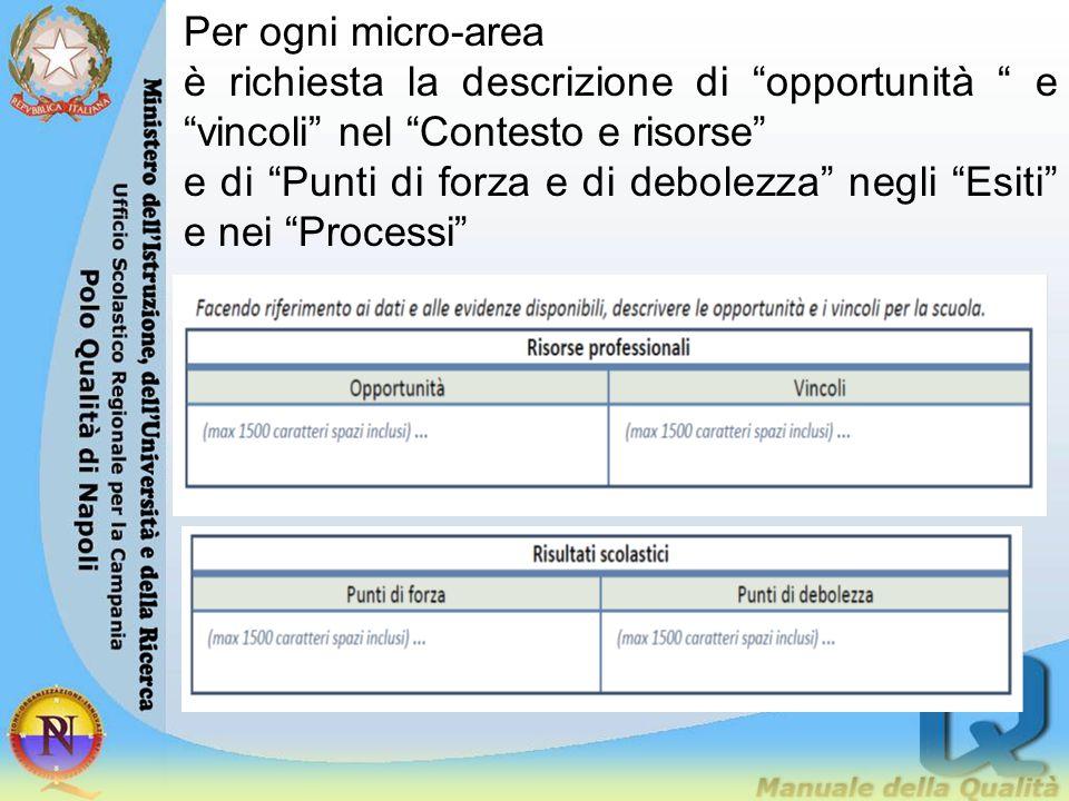 Per ogni micro-area è richiesta la descrizione di opportunità e vincoli nel Contesto e risorse