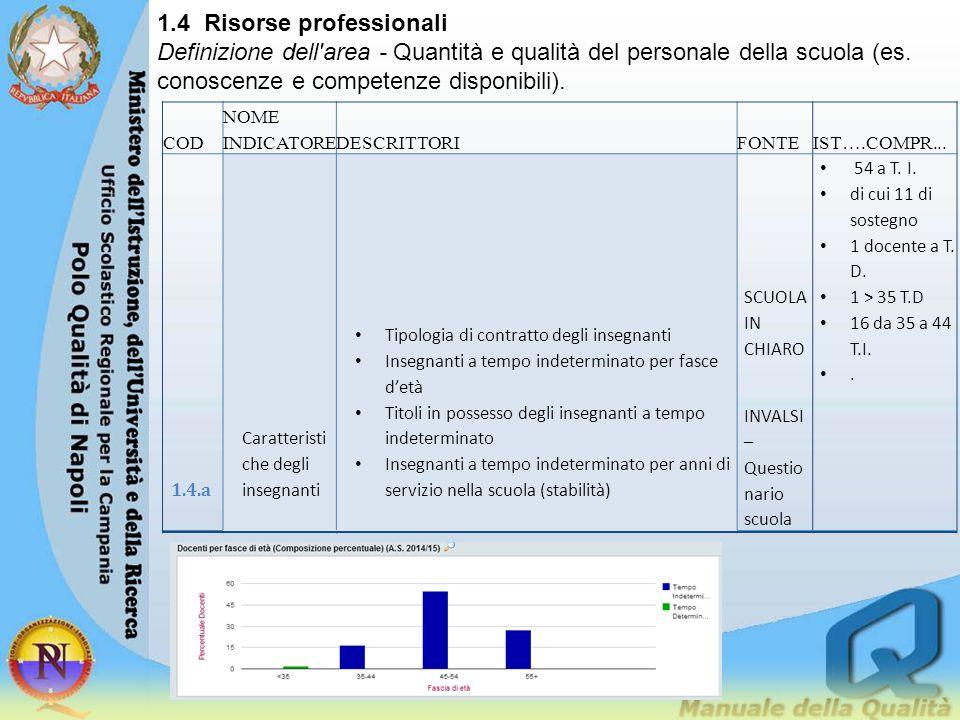1.4 Risorse professionali