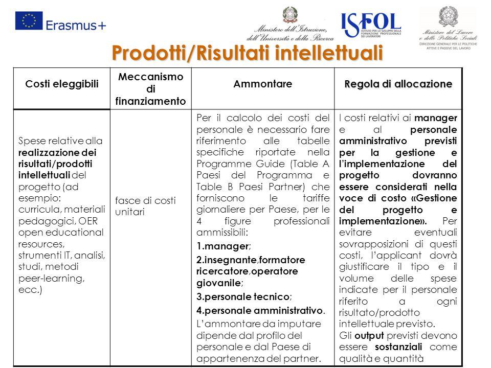 Prodotti/Risultati intellettuali