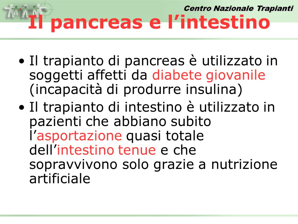 Il pancreas e l'intestino