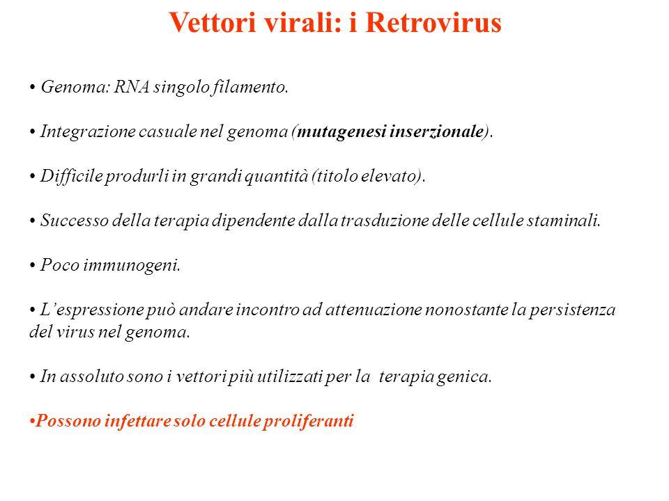 Vettori virali: i Retrovirus
