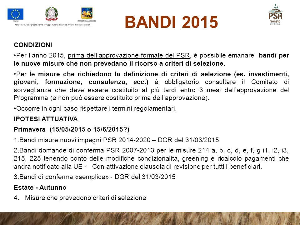 BANDI 2015 CONDIZIONI.