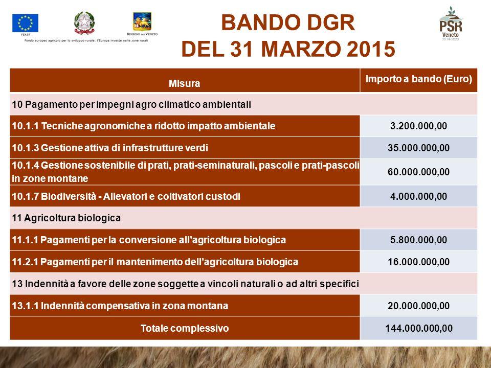 BANDO DGR DEL 31 MARZO 2015 Misura Importo a bando (Euro)