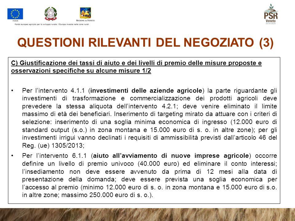 QUESTIONI RILEVANTI DEL NEGOZIATO (3)