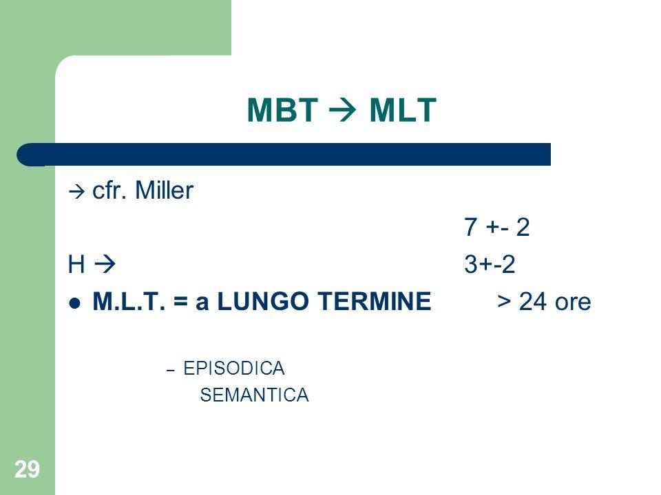 MBT  MLT cfr. Miller 7 +- 2 H  3+-2