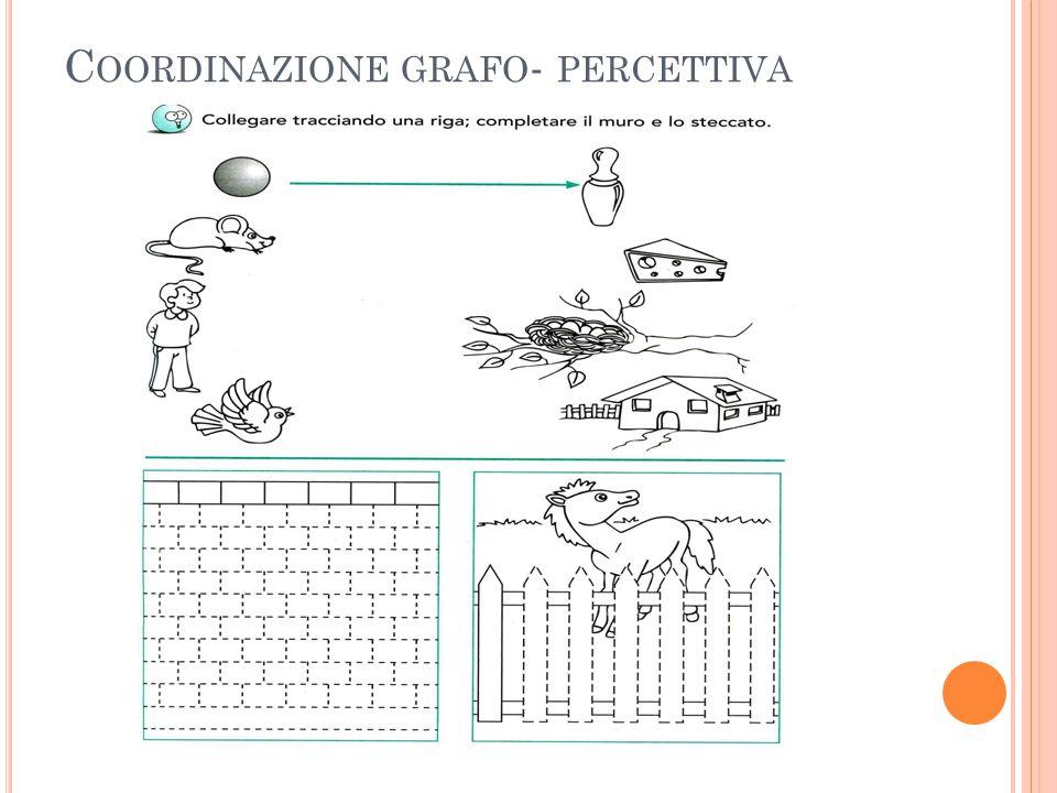 Coordinazione grafo- percettiva