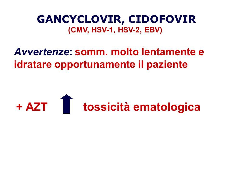 GANCYCLOVIR, CIDOFOVIR