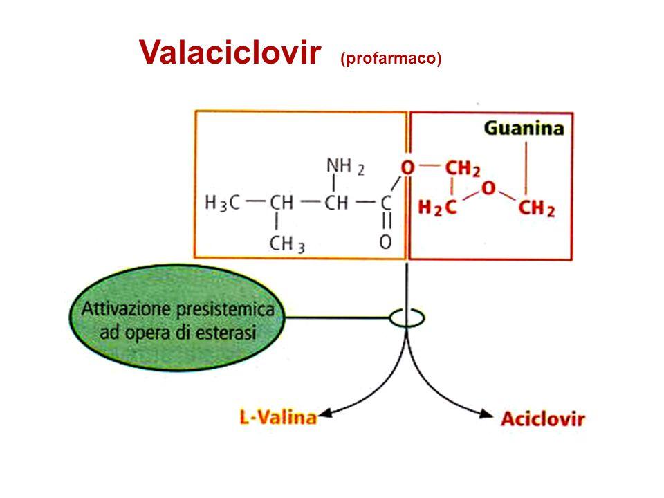 Valaciclovir (profarmaco)