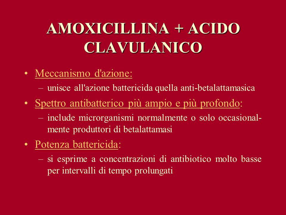 AMOXICILLINA + ACIDO CLAVULANICO