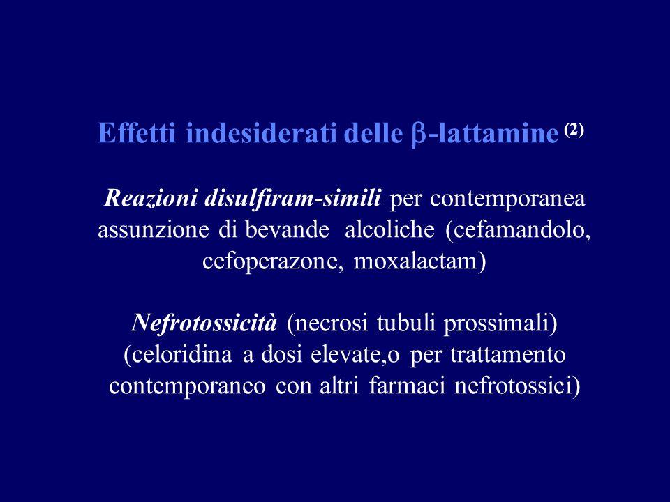 Effetti indesiderati delle -lattamine (2)