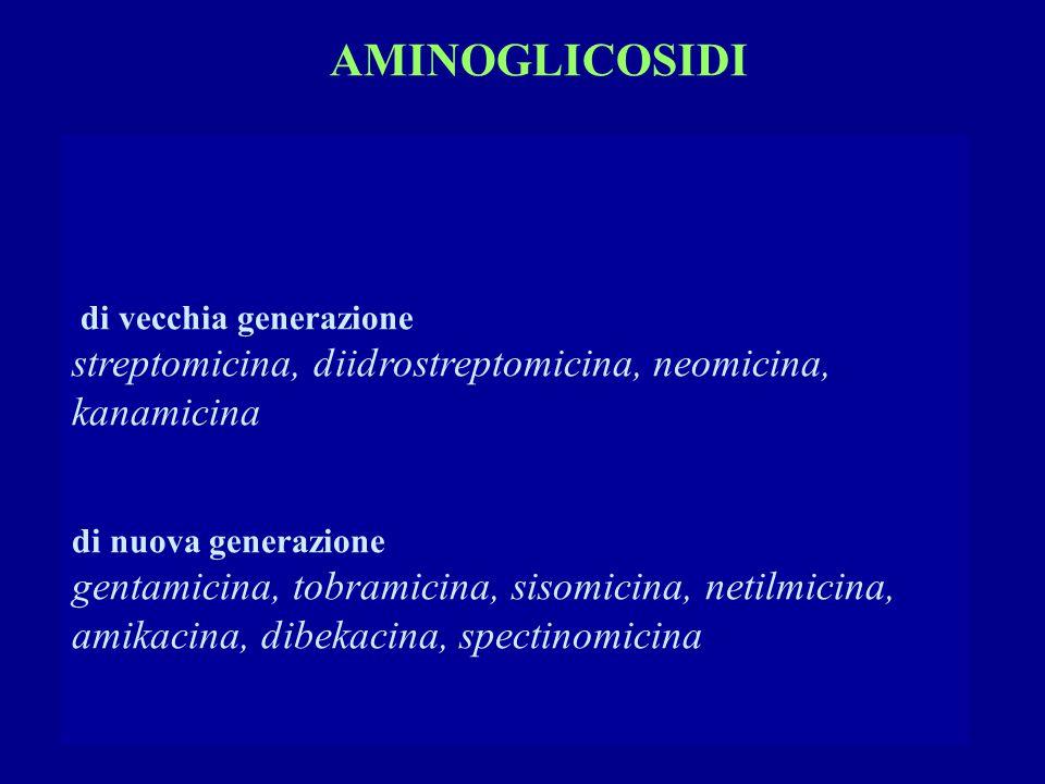 AMINOGLICOSIDI di vecchia generazione. streptomicina, diidrostreptomicina, neomicina, kanamicina.