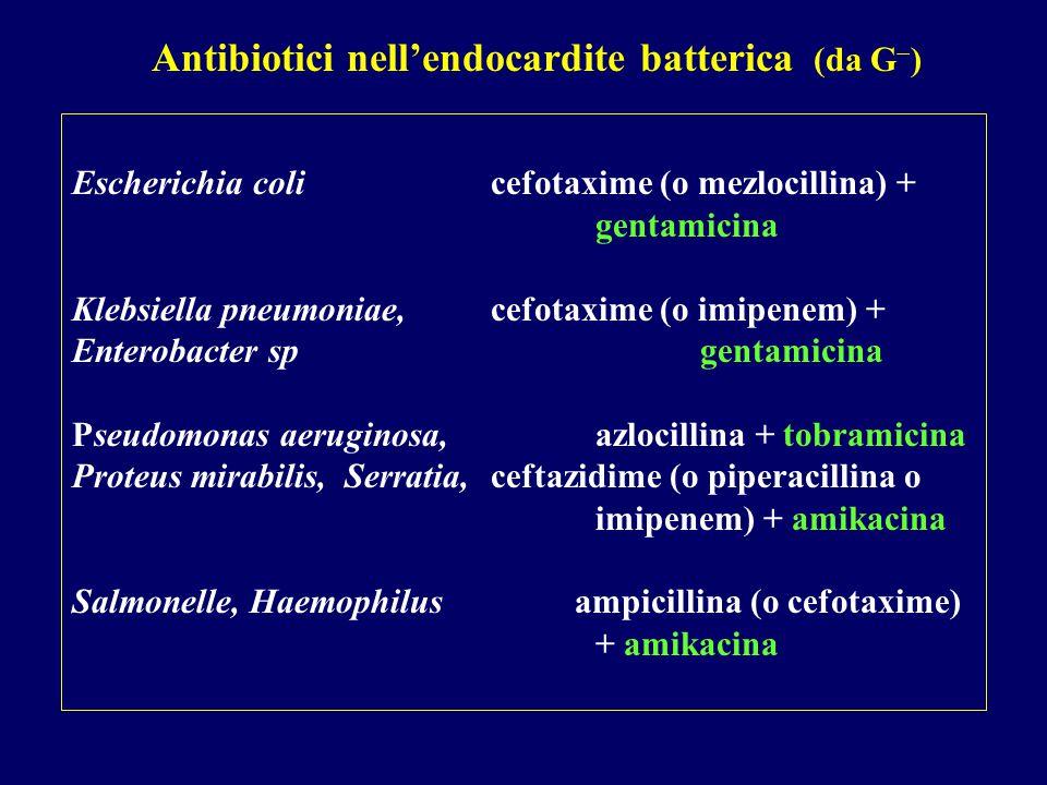 Antibiotici nell'endocardite batterica (da G)