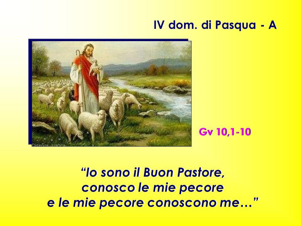 Io sono il Buon Pastore, e le mie pecore conoscono me…