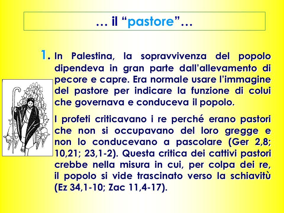 … il pastore …