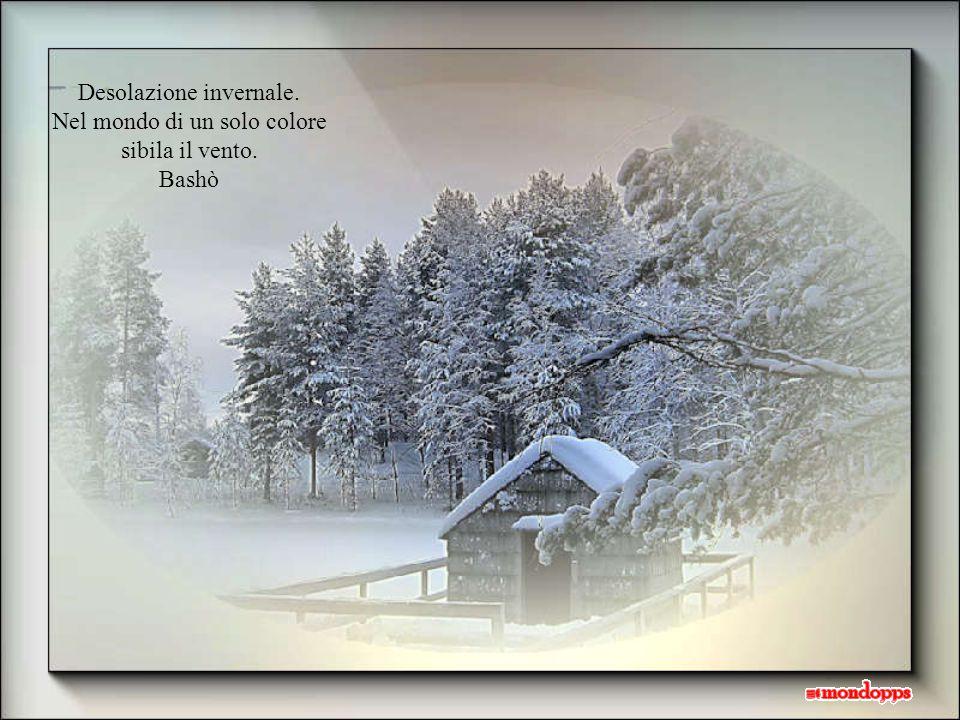 Desolazione invernale. Nel mondo di un solo colore sibila il vento.