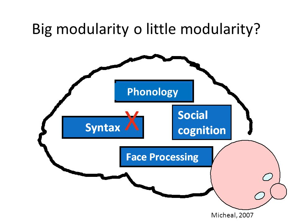 Big modularity o little modularity