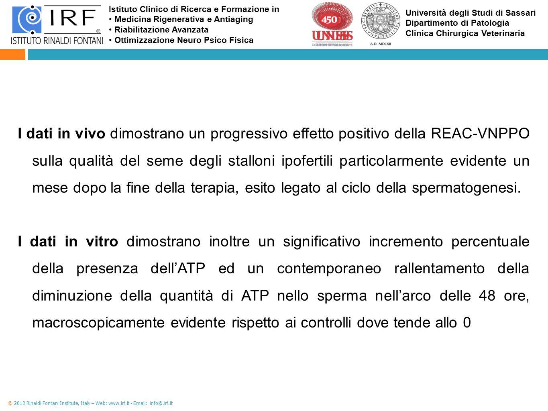 I dati in vivo dimostrano un progressivo effetto positivo della REAC-VNPPO sulla qualità del seme degli stalloni ipofertili particolarmente evidente un mese dopo la fine della terapia, esito legato al ciclo della spermatogenesi.