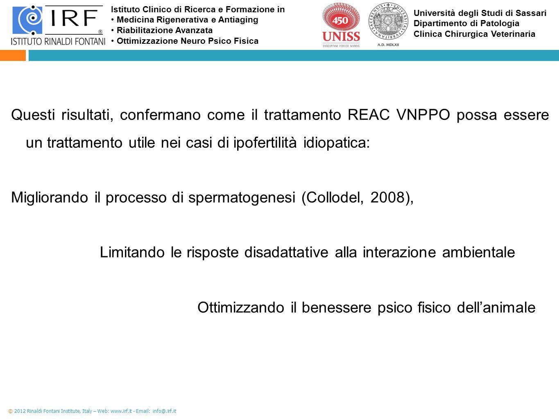 Migliorando il processo di spermatogenesi (Collodel, 2008),
