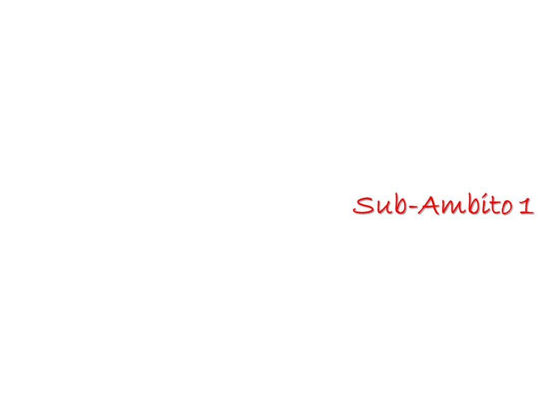 Sub-Ambito 1