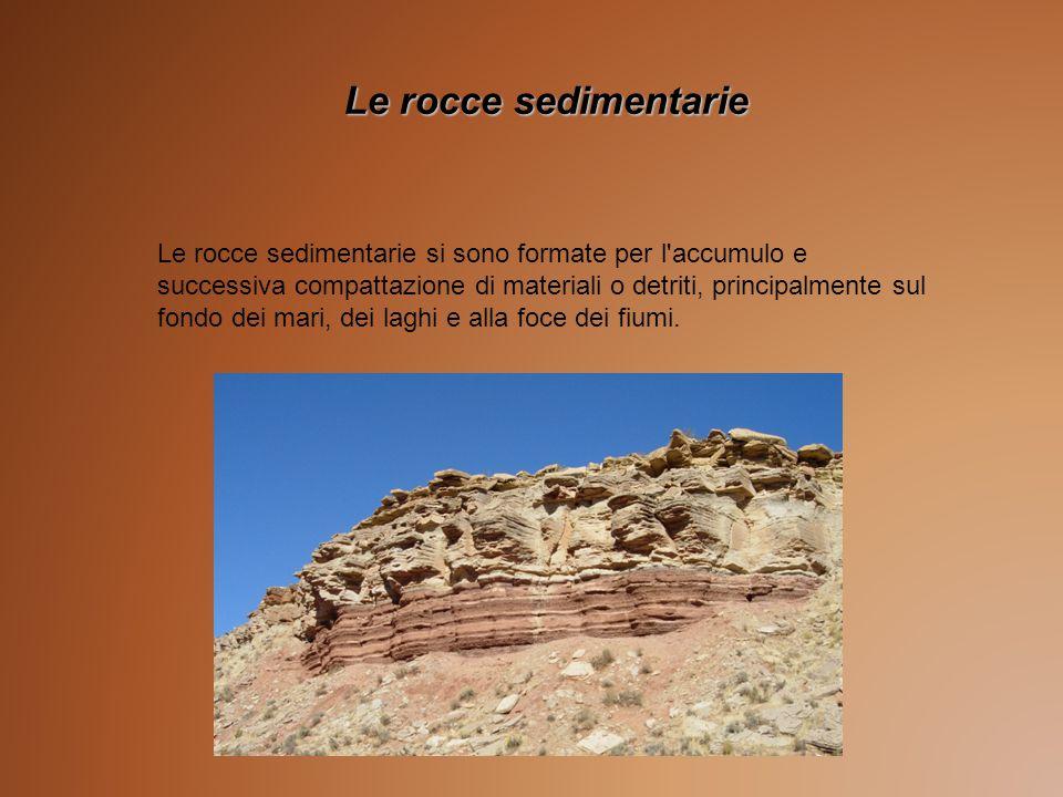 Le rocce sedimentarie