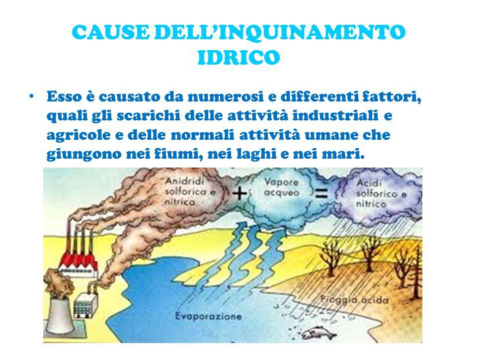 CAUSE DELL'INQUINAMENTO IDRICO