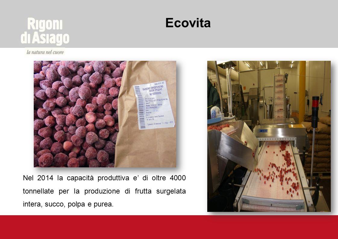 Ecovita Nel 2014 la capacità produttiva e' di oltre 4000 tonnellate per la produzione di frutta surgelata intera, succo, polpa e purea.