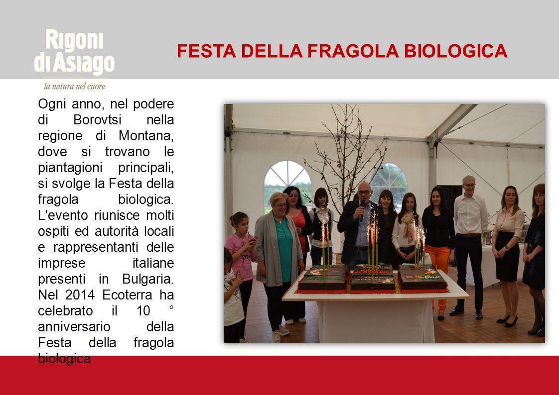 FESTA DELLA FRAGOLA BIOLOGICA