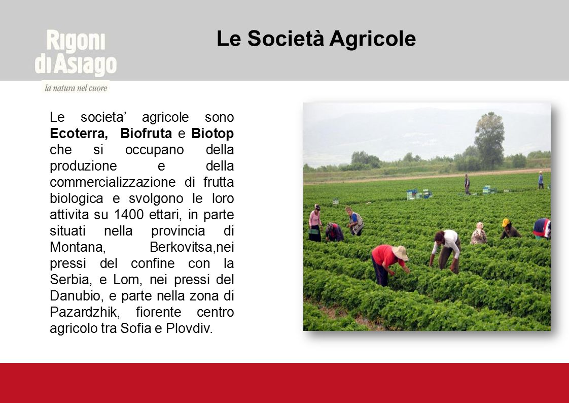 Le Società Agricole