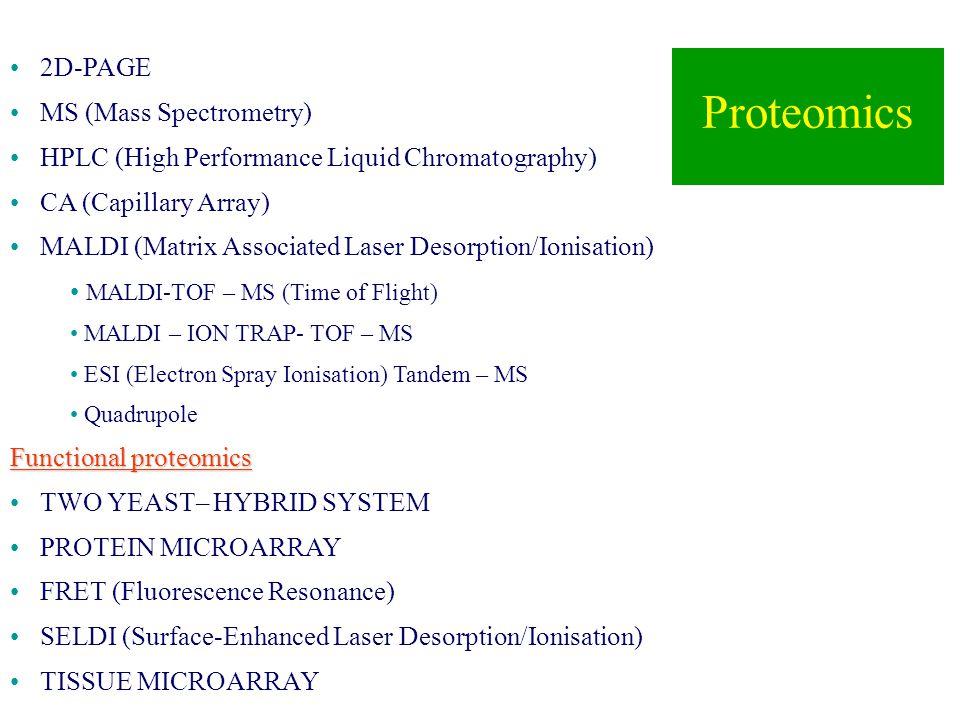 Proteomics 2D-PAGE MS (Mass Spectrometry)