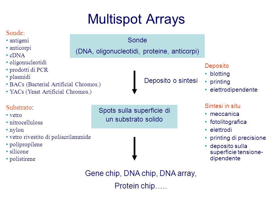 Multispot Arrays Gene chip, DNA chip, DNA array, Protein chip…..