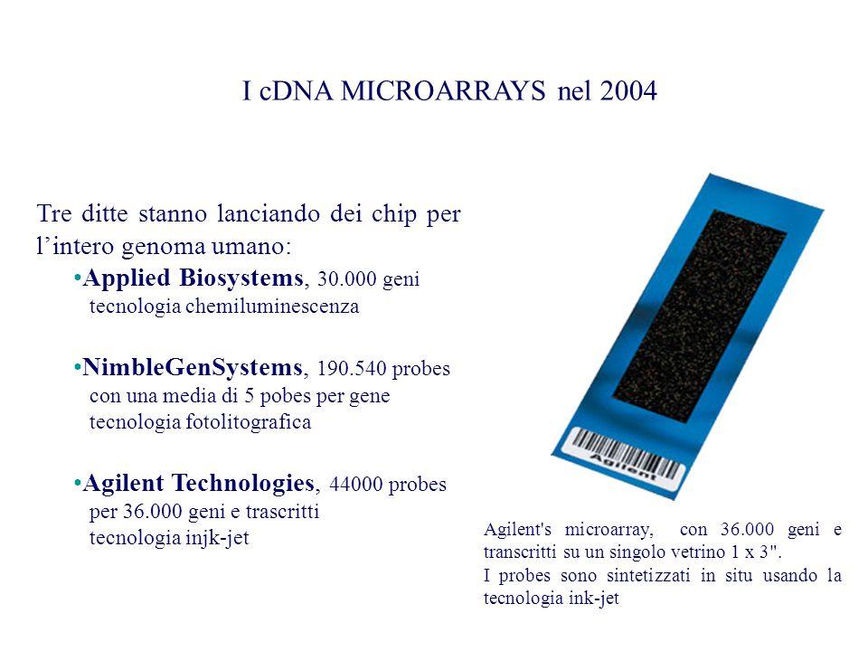 I cDNA MICROARRAYS nel 2004 Tre ditte stanno lanciando dei chip per l'intero genoma umano: Applied Biosystems, 30.000 geni.