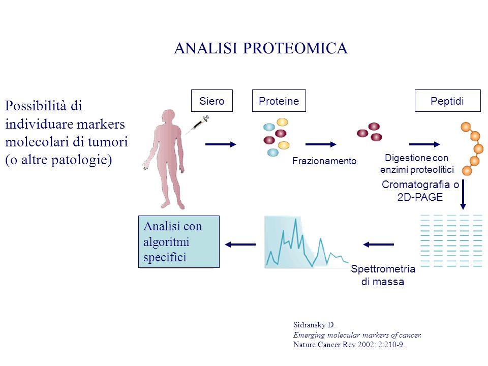 ANALISI PROTEOMICA Siero. Proteine. Peptidi. Possibilità di individuare markers molecolari di tumori (o altre patologie)
