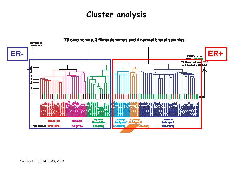 Cluster analysis ER- ER+ Sorlie et al., PNAS, 98, 2001
