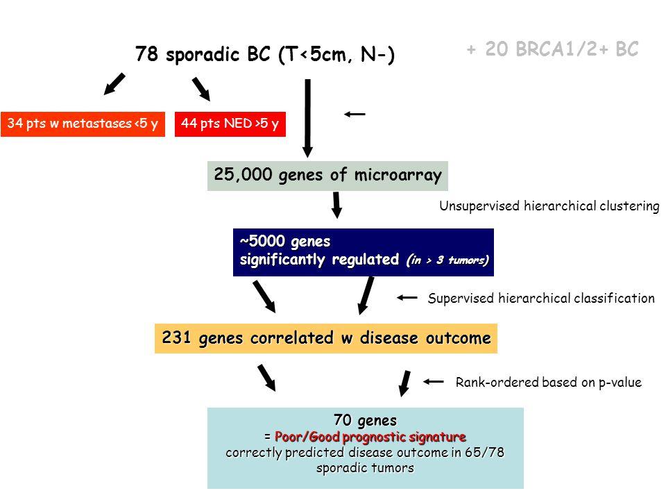 78 sporadic BC (T<5cm, N-)