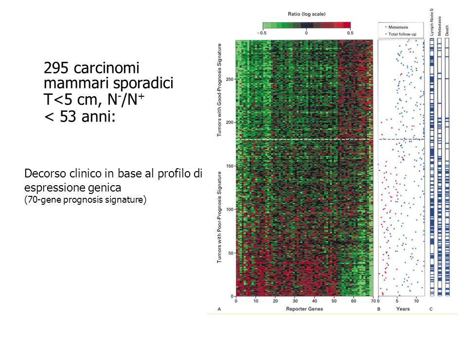 295 carcinomi mammari sporadici T<5 cm, N-/N+ < 53 anni: