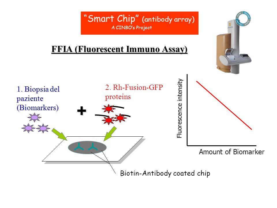 + Smart Chip (antibody array) FFIA (Fluorescent Immuno Assay)