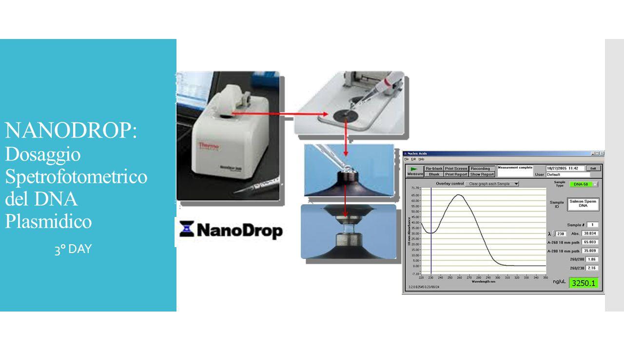 NANODROP: Dosaggio Spetrofotometrico del DNA Plasmidico