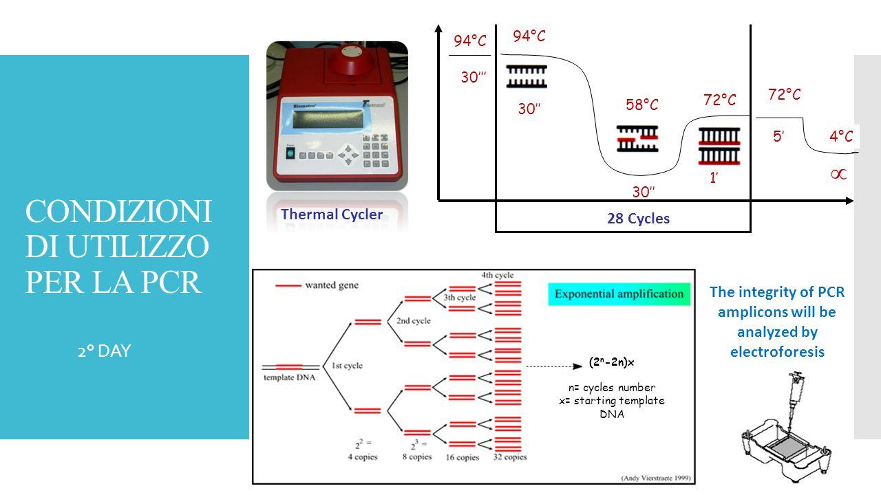 CONDIZIONI DI UTILIZZO PER LA PCR