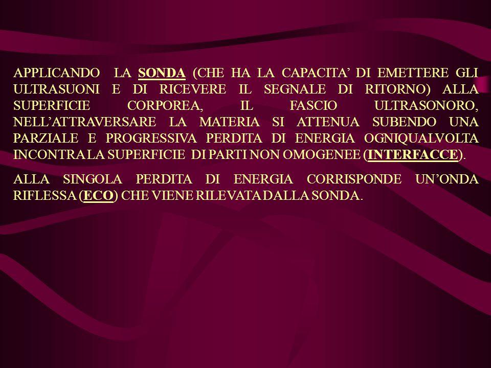 APPLICANDO LA SONDA (CHE HA LA CAPACITA' DI EMETTERE GLI ULTRASUONI E DI RICEVERE IL SEGNALE DI RITORNO) ALLA SUPERFICIE CORPOREA, IL FASCIO ULTRASONORO, NELL'ATTRAVERSARE LA MATERIA SI ATTENUA SUBENDO UNA PARZIALE E PROGRESSIVA PERDITA DI ENERGIA OGNIQUALVOLTA INCONTRA LA SUPERFICIE DI PARTI NON OMOGENEE (INTERFACCE).
