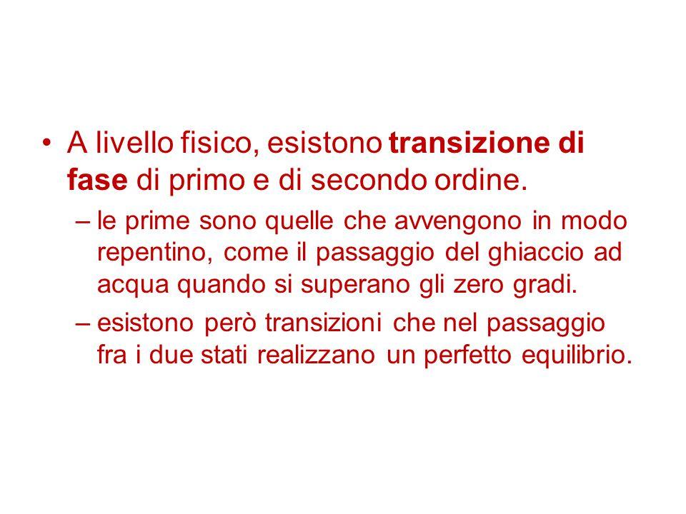 A livello fisico, esistono transizione di fase di primo e di secondo ordine.