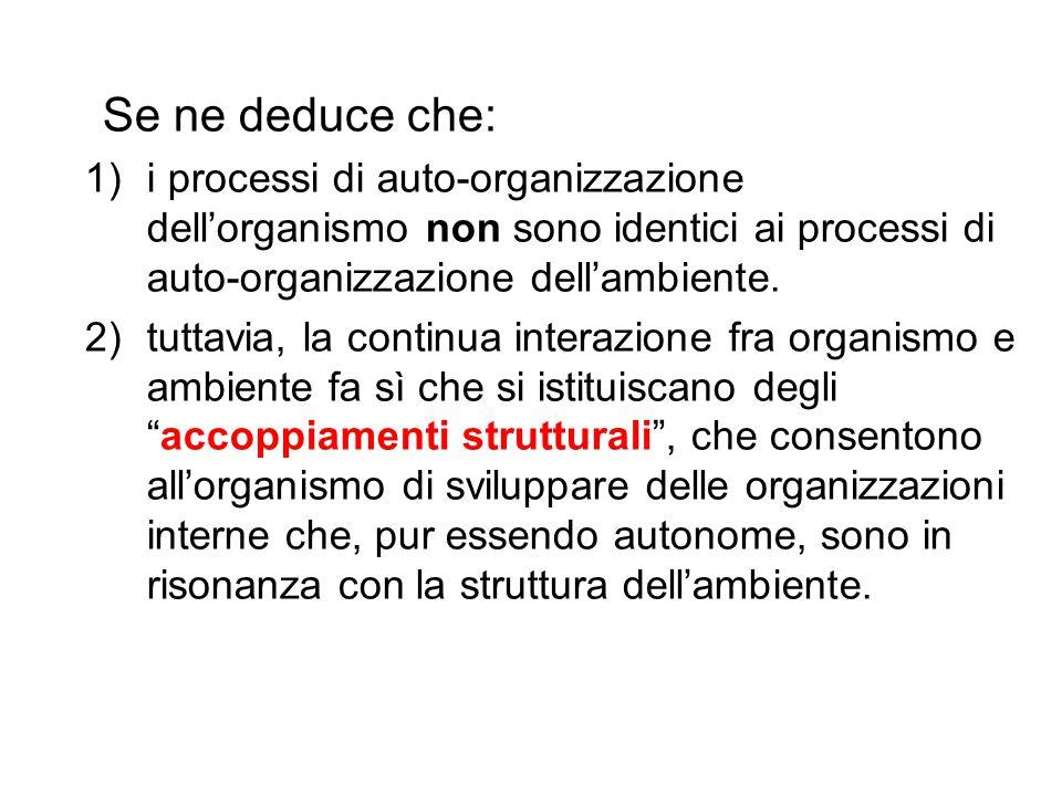 Se ne deduce che: i processi di auto-organizzazione dell'organismo non sono identici ai processi di auto-organizzazione dell'ambiente.