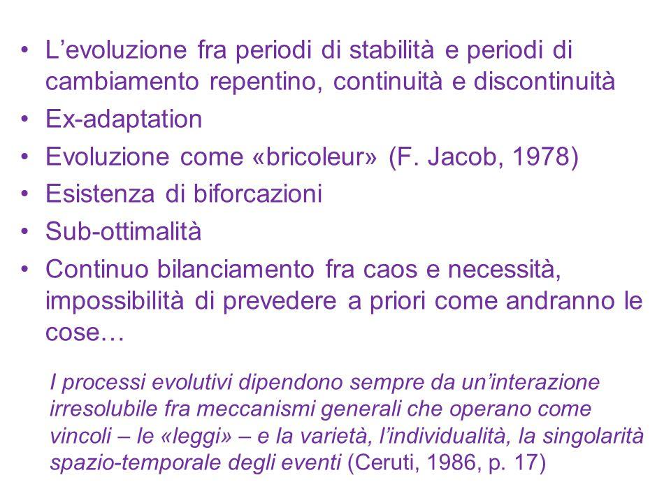 Evoluzione come «bricoleur» (F. Jacob, 1978) Esistenza di biforcazioni