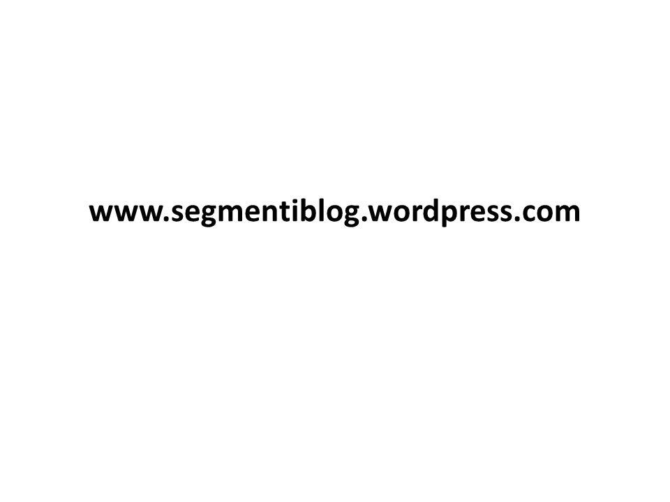 www.segmentiblog.wordpress.com