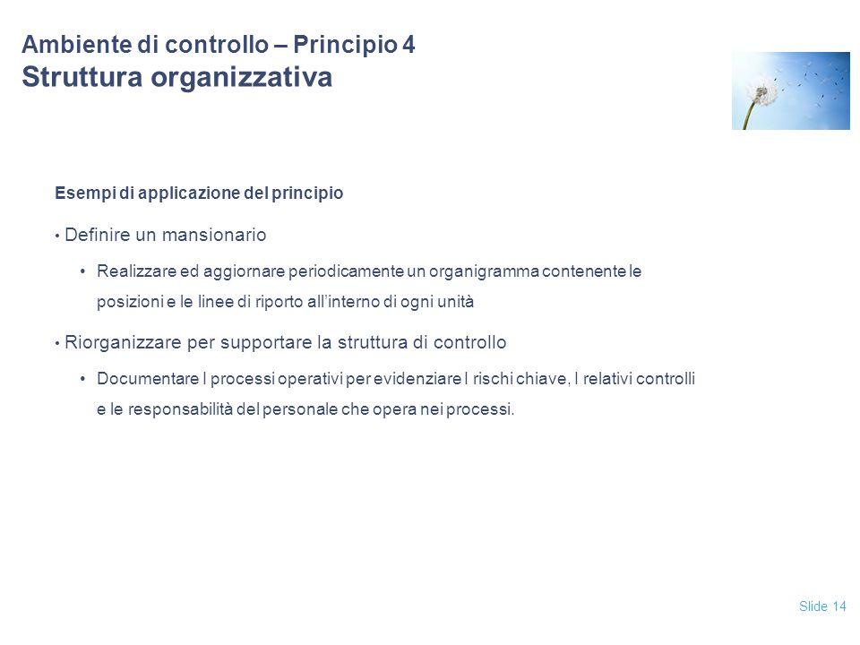 Ambiente di controllo – Principio 4 Struttura organizzativa