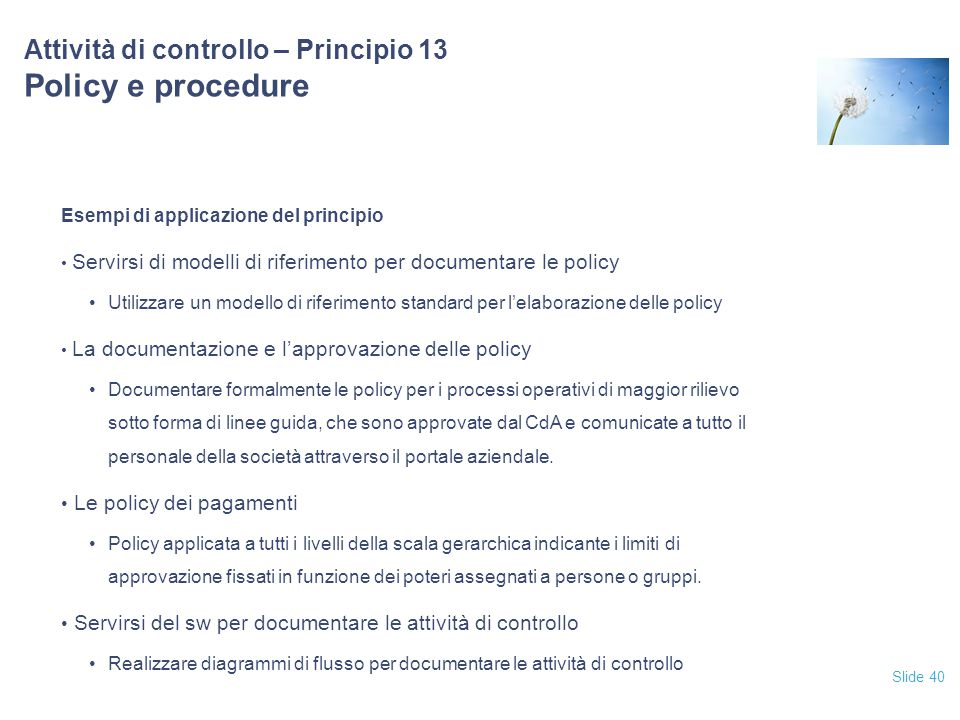 Attività di controllo – Principio 13 Policy e procedure