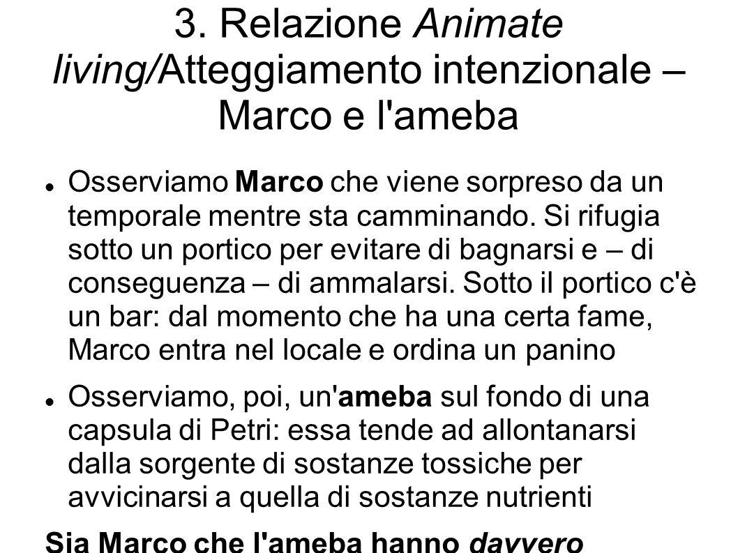 3. Relazione Animate living/Atteggiamento intenzionale – Marco e l ameba
