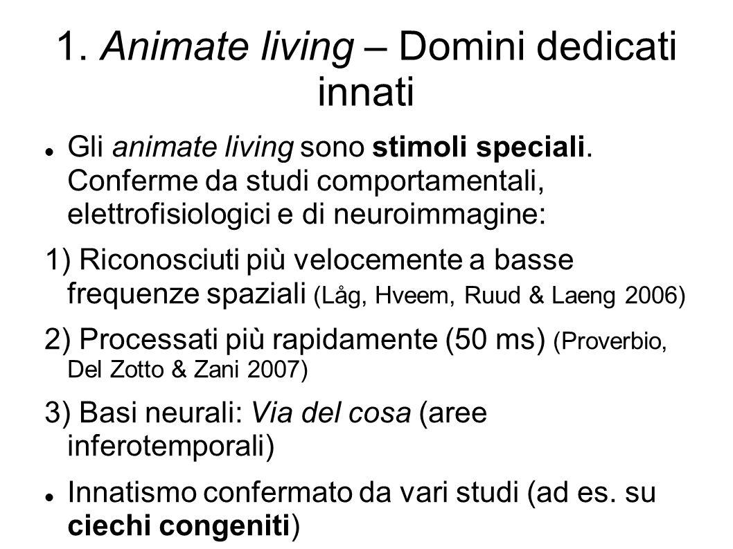 1. Animate living – Domini dedicati innati